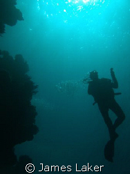 Ilike this shot of a diver off shark observatory in Sharm. by James Laker