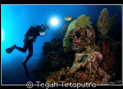 Taken at Menjangan Islang, West Bali, Indonesia by Teguh Tirtaputra