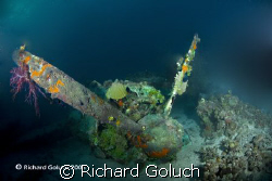 Emily Flying Boat-Engine in corals-Truk Lagoon by Richard Goluch