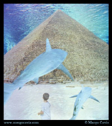 Pyramid underwater.  by Margo Cavis