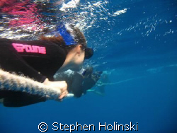 Looking for Minke Whales on the back-line.  Coral Sea, Au... by Stephen Holinski