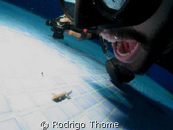 Swimming pool cleaning system...