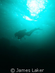 GRACE. Picture taken late afternoon at Jackfish Alley Sharm. by James Laker
