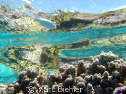 On the barrier reef, Bora Bora sony cybershot T5 by Marc Biehler