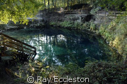 Madison Blue Spring, Lee FL. Camera Nikon D2Xs by Ray Eccleston