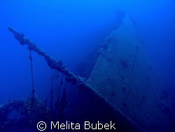 the fairy tale of wreck tihany, island unije, croatia by Melita Bubek