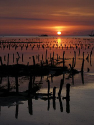 Sunset over seaweed farm, Nusa Lembongan by Doug Anderson