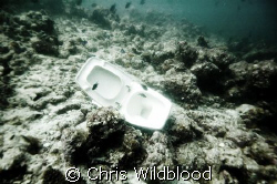 How we treat our oceans. by Chris Wildblood