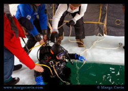 Ice diving in Minnesota by Margo Cavis