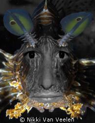 Self portrait - I + Lionfish by Nikki Van Veelen