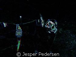 Just having a nice rest, at the bottom by Jesper Pedersen