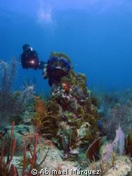 """Juan in """"La Nasa"""" dive site at Mayaguez, P.R. by Abimael Márquez"""