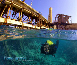 Rhys from Scubapro under the jetty at Big Brother in the ... by Fiona Ayerst
