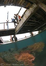 Sea fan's under KBR pier. Lembeh strait's. D200, 10.5mm. by Derek Haslam