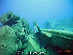 wreckage of the Ora Verde by Allen Weaver