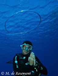 ANGEL diver !!??? D50/12-24mm (borabora).