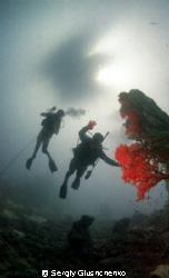 Divers by Sergiy Glushchenko