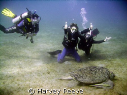 Happy divers by Harvey Reeve