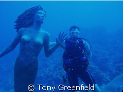 Mermaids do exist by Tony Greenfield