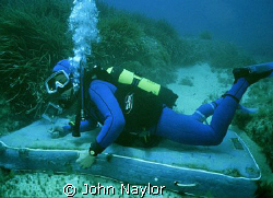 The sea bed. by John Naylor