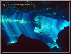 "Diving in the ""Cenotes""... Amazing by Yannick Abel-Coindoz"