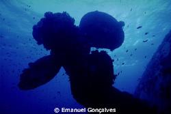 Salem Express Shipwreck Propeller, Egyptian Red Sea, Niko... by Emanuel Gonçalves