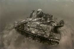 Getting roasted in south Jordanian waters this tank is an... by Viora Alessio