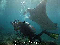 Manta cleaning station  by Larry Polster