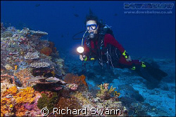 My wife enjoying the Colourful Corals. Sabah, Borneo.  Ni... by Richard Swann