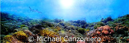 Merged three shots of a reef at Wakatobi by Michael Canzoniero