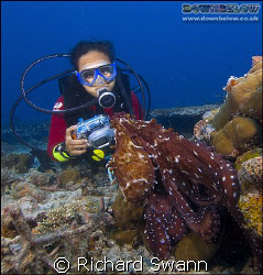 Ev gets nice and close to the Day Octopus ! Nikon D2x 12-... by Richard Swann