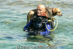 Do you want to dive with Fenzy? She's a nice dog.  by Beatrice Primatesta