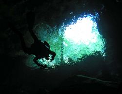 Exiting a cenote in Quinta Roo Mexico by Stuart Zlotnik