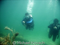 Open Water Divers navigating the inside reef at Lauderdal... by Michael Kovach