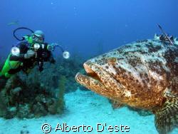 Pastorita & scubaman by Alberto D'este