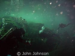 diving in the cenotes of playa del carmen by John Johnson
