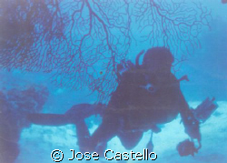 As my strobe failed and stop working,I began to shoot sil... by Jose Castello
