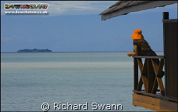 View of Sipadan island and my wife's orange hat from our ... by Richard Swann
