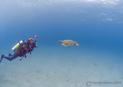 Mr H in action - photographing the turtle shown in his la... by Mark Thomas