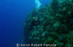 Wendy off the wall in Cayman Brac.