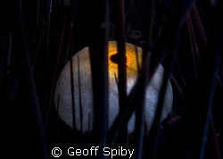 evil eye by Geoff Spiby