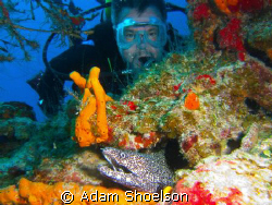 I'm not sure he even knew the eel was there until I showe... by Adam Shoelson