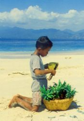 Gili Meno, Lombok, Indonesia - pineapple anyone? by Claudia Pellarini