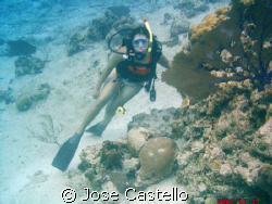 her first dive after her certification she really enjoy t... by Jose Castello
