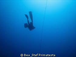 """To the Blue"" by Bea & Stef Primatesta"