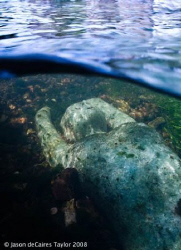 Glass underwater river sculpture called Alluvia in Canter... by Jason Decaires Taylor