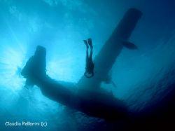Sea-plane and diver. San Salvador, Bahamas. Nikon CP 5000... by Claudia Pellarini