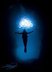 """Underwater majesty,  Unending inspiration""  by Nicholas Samaras"