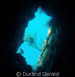 light throughing the shaft of the cave in blanquilla isla... by Durand Gerald