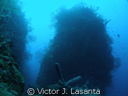 view of the pinnacle of Efra wall dive site at parguera P... by Victor J. Lasanta